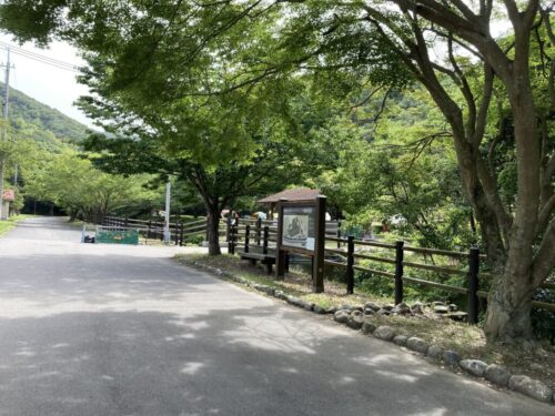 加太オートキャンプ場